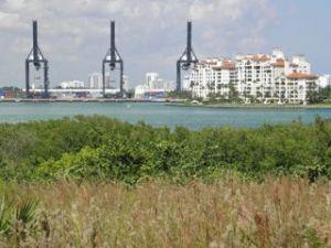 Port o Miami