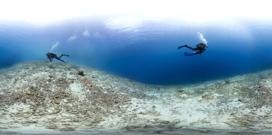 Dead Caribbean reefs are no fun. Bonaire, 2013 (c) Catlin Seaview Survey.