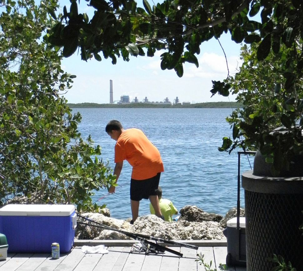 The dock near Biscayne National Park's visitor center offers clear views of the nuclear plant.